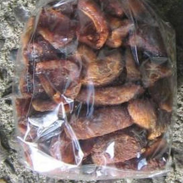 wilde Aprikosen, Türkei, Bio, 200g roh