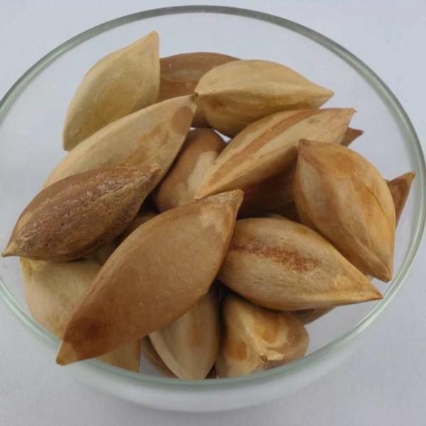 Pili Nüsse, 250g, unbehandelt, roh, Philippinen, ungeschält