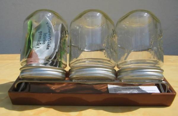 Keimgläser, 1-3 Gläser- mit Stativ und Schale