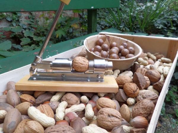 Bio Nuss Set: 6 Sorten Nüsse mit Schale; Bio roh, ohne Zusätze 1,8kg