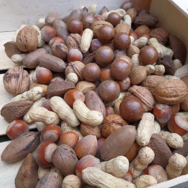 Kleines Nuss Set: 7 Sorten Nüsse in Schale; Roh, ohne Zusätze 900g, teils Bio