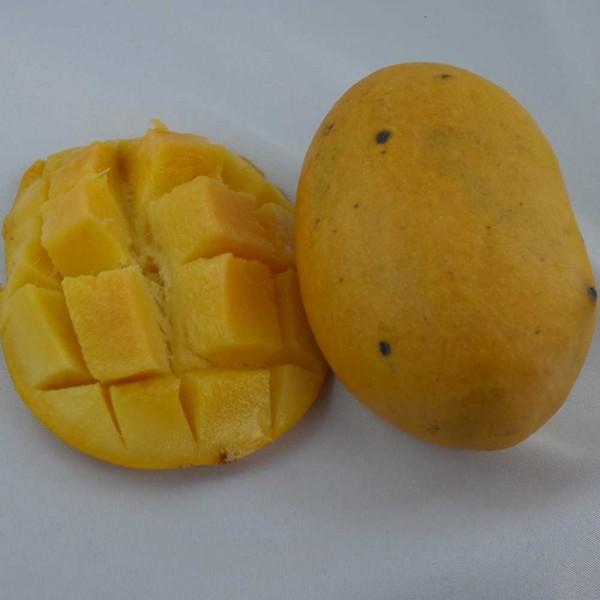 Frische Mangos, reif und süß, Stück