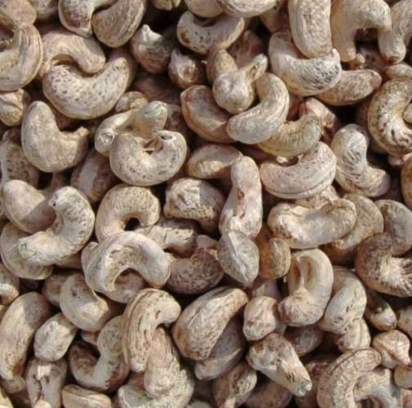 Cashewkerne mit Haut, 200g, roh, Permakultur