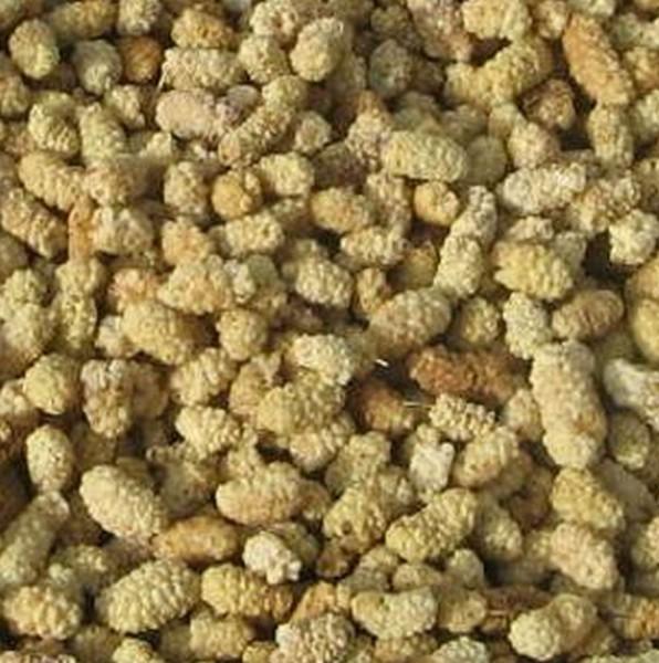 helle Maulbeeren, Bio, 200g, weich und süß, roh